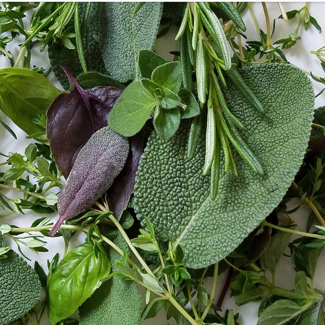 Gorgeous mix of fresh summer herbs