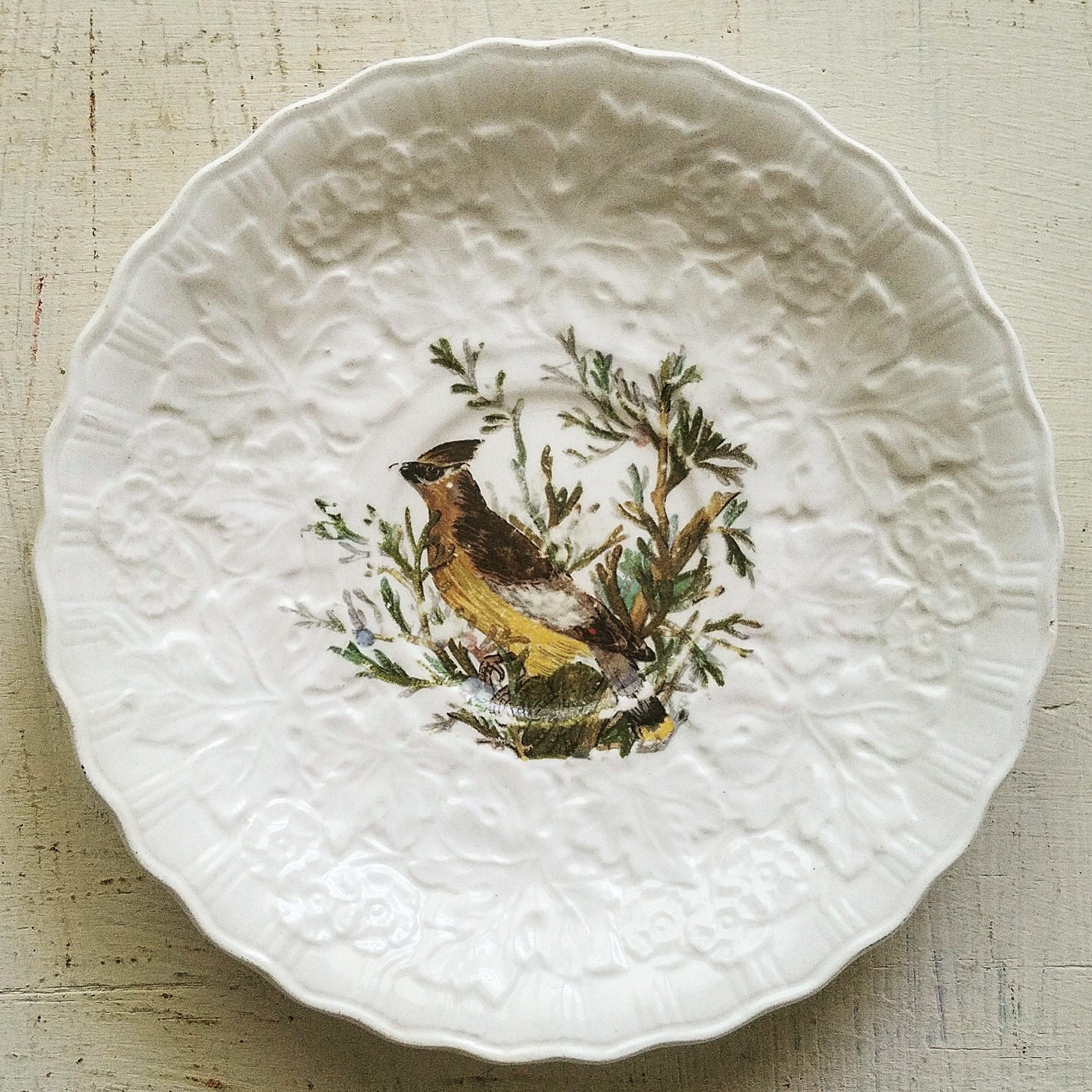 Antique Ironstone Transferware Saucer Vintage Bird Dishes