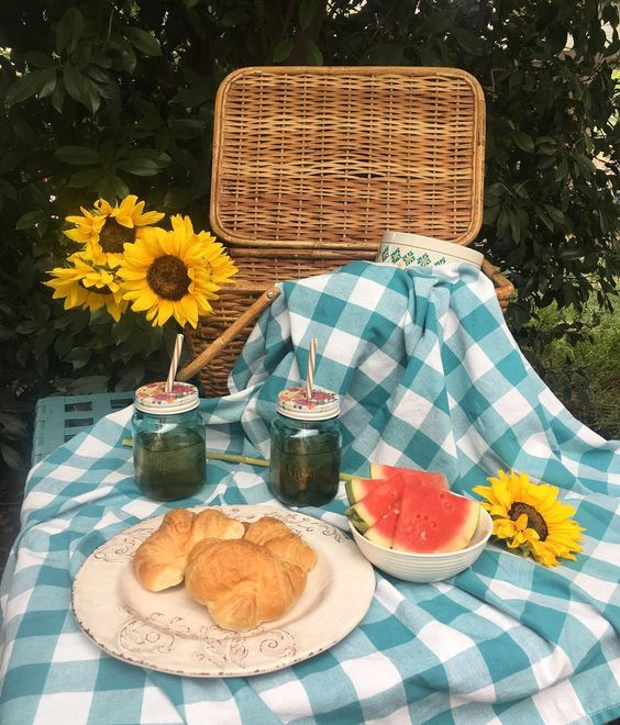 Gorgeous summer picnic plaid blanket blue checked tablecloth