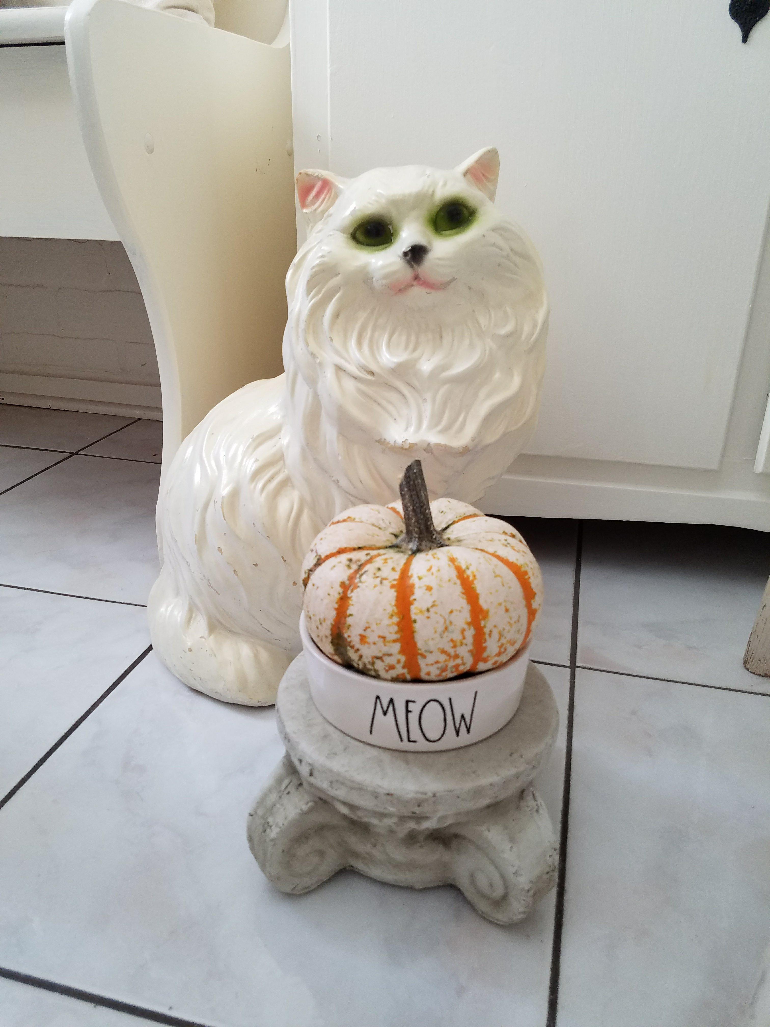 Cute rad dunn cat bowl shabby chic cat