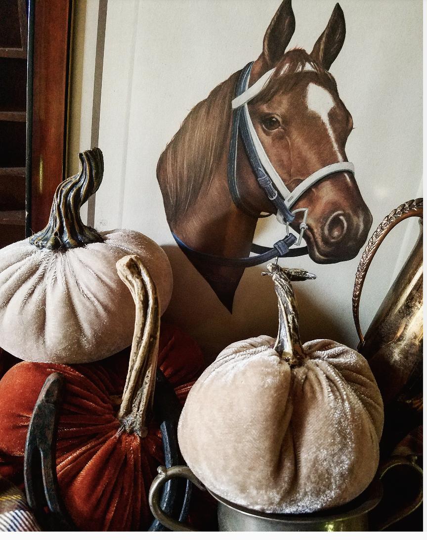Vintage horse picture fall decorating ideas velvet pumpkins secretariat junk finds thrift treasures