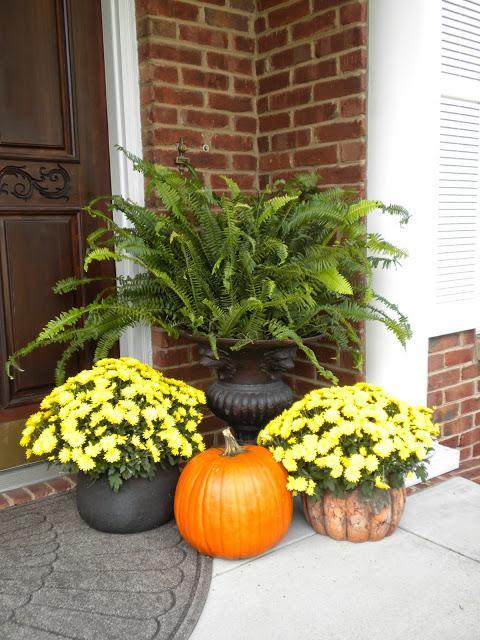 Ferns and pumpkins fall porch ideas