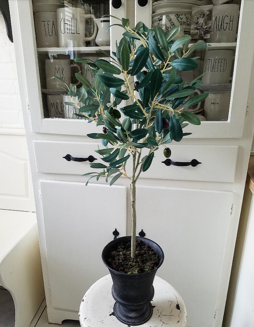 Beautiful Faux olive tree in black urn
