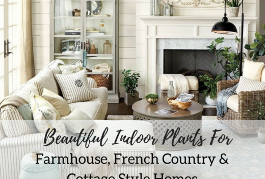Beautiful Indoor Plants For Farmhouse, French Country And Cottage Style  Homes / Garden Thyme Interior Decor And Styling