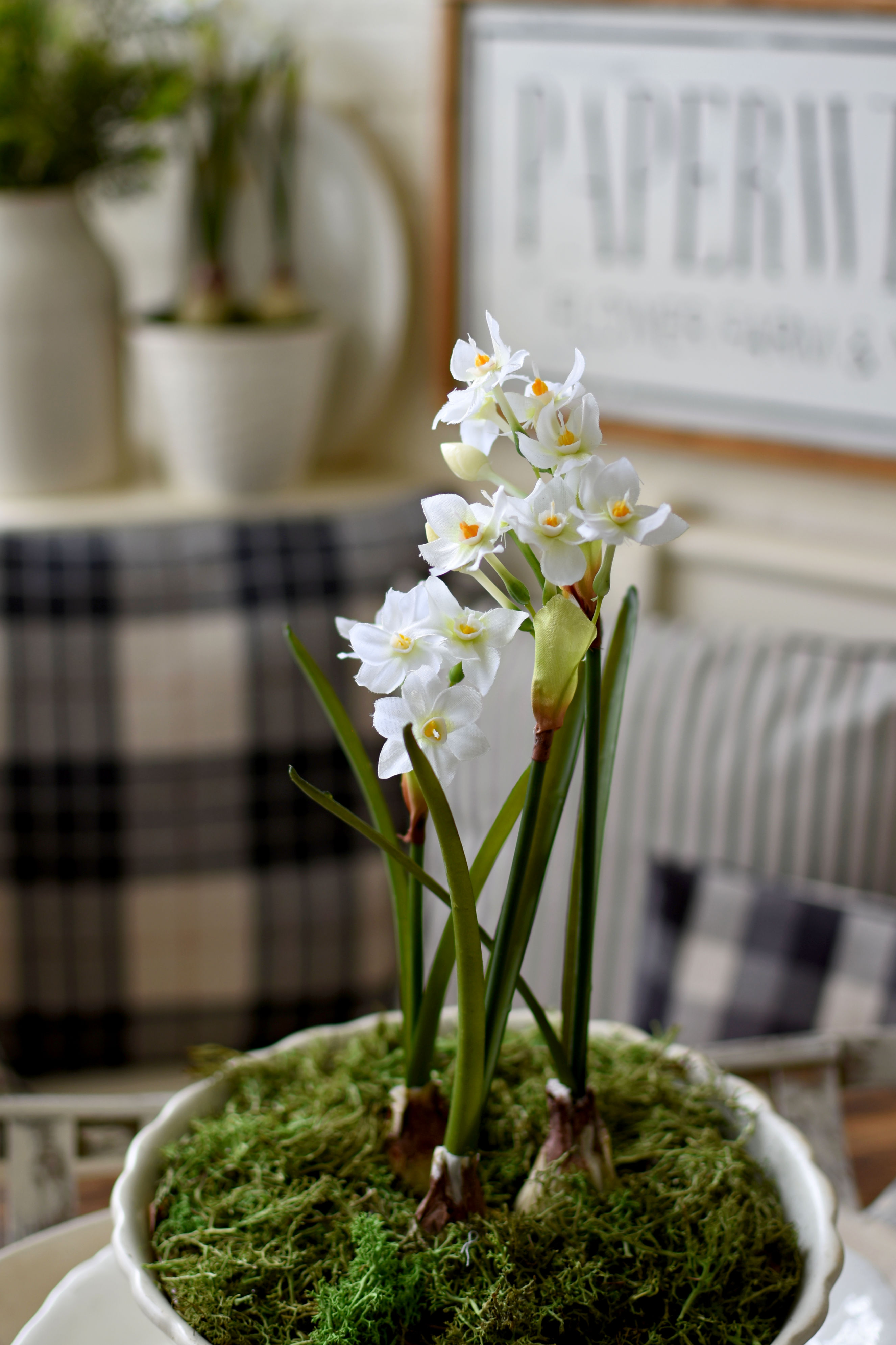 beautiful faux paperwhites in vintage ironstone bowl with moss Pottery Barn faux paperwhites