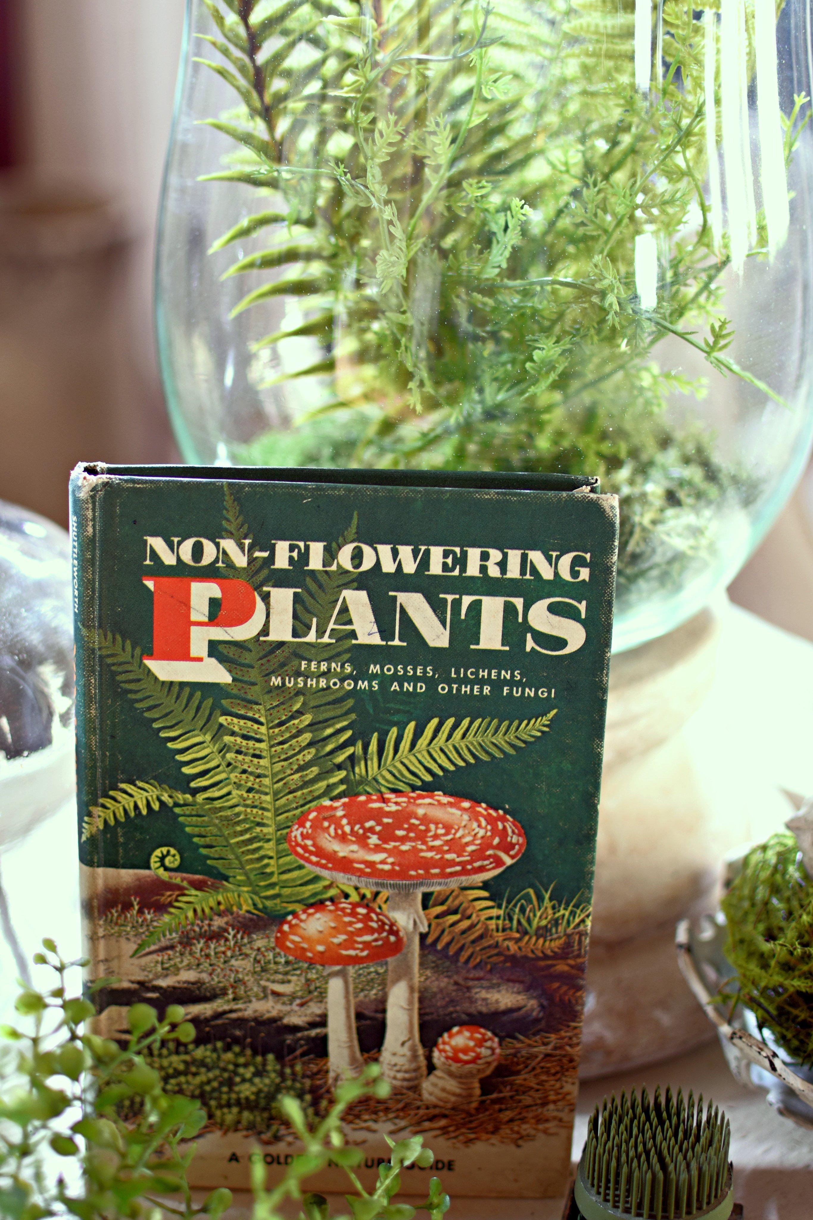 Vintage Botanical Book Non-Flowering Plants ferns, bracken, mushrooms, fungi, moss decor