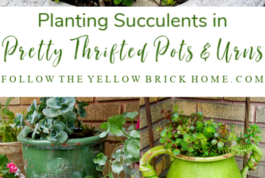Beautiful Succulent Gardening Ideas How to plant succulents in urns and pots