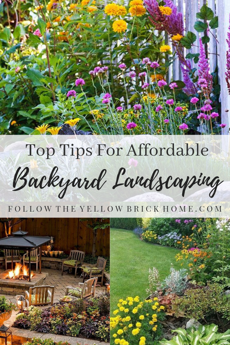 Tips for affordable backyard landscaping budget garden ideas