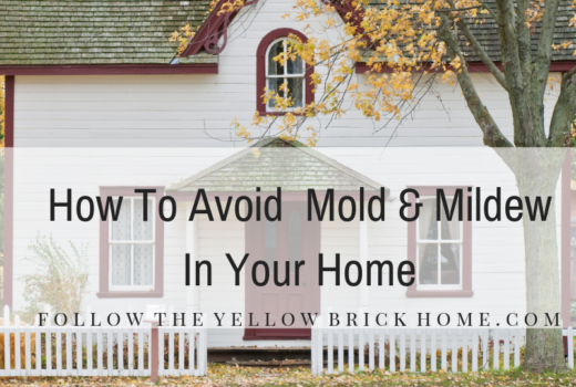 How to avoid mold and mildew
