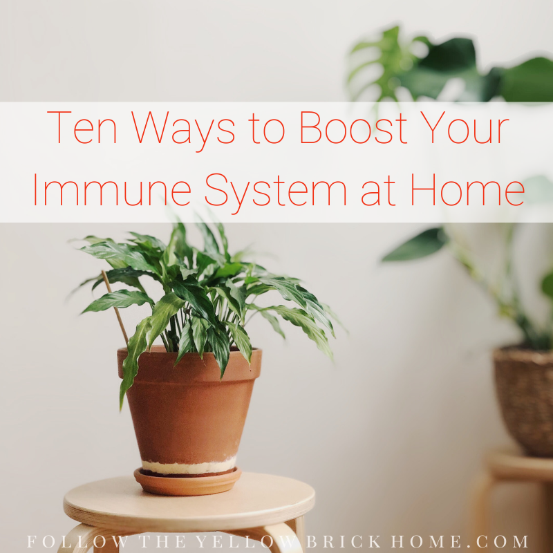 immune system boosters healthy home environment