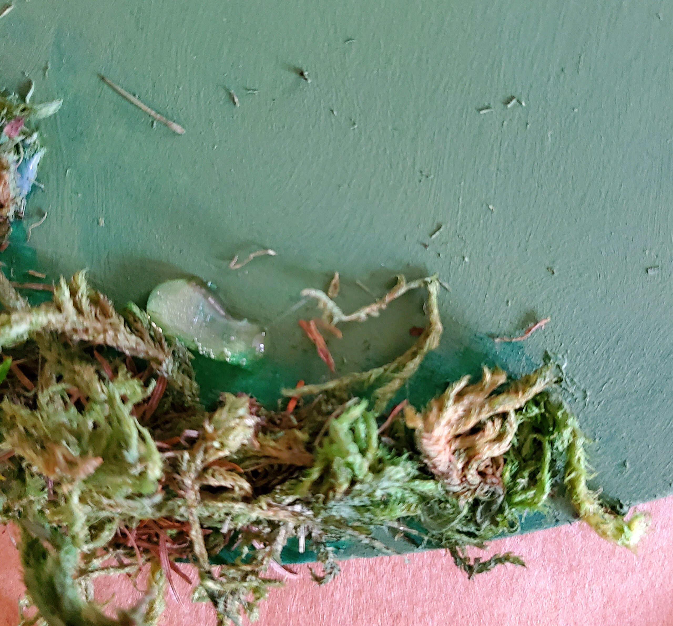 DIY Moss Covered Shamrock Farmhouse Dollar Tree Crafts