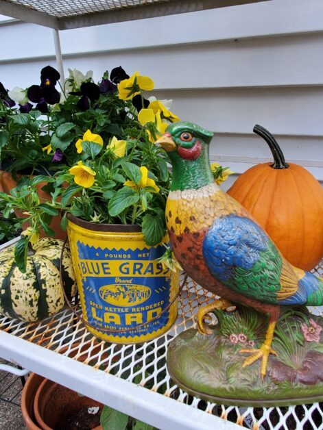 Vintage fall pheasant vintage bucket with yellow pansies outdoor fall decorating ideas