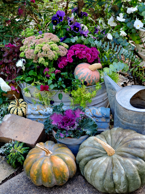 fall garden vignette with cool toned plants and pumpkins