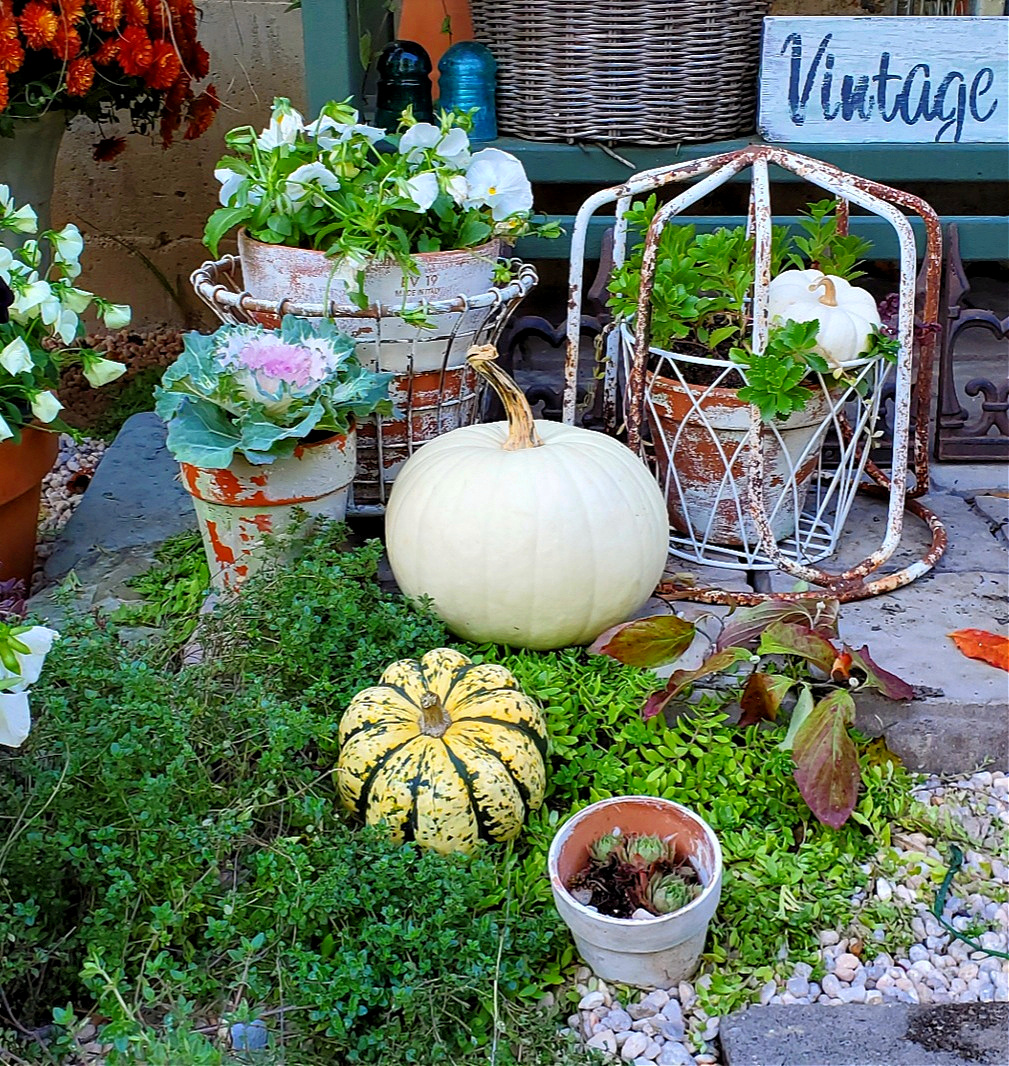 Fall garden vignette pretty f