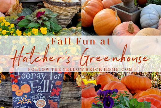 Fall Decorting with pumpkins and gourds fall decorating ideas