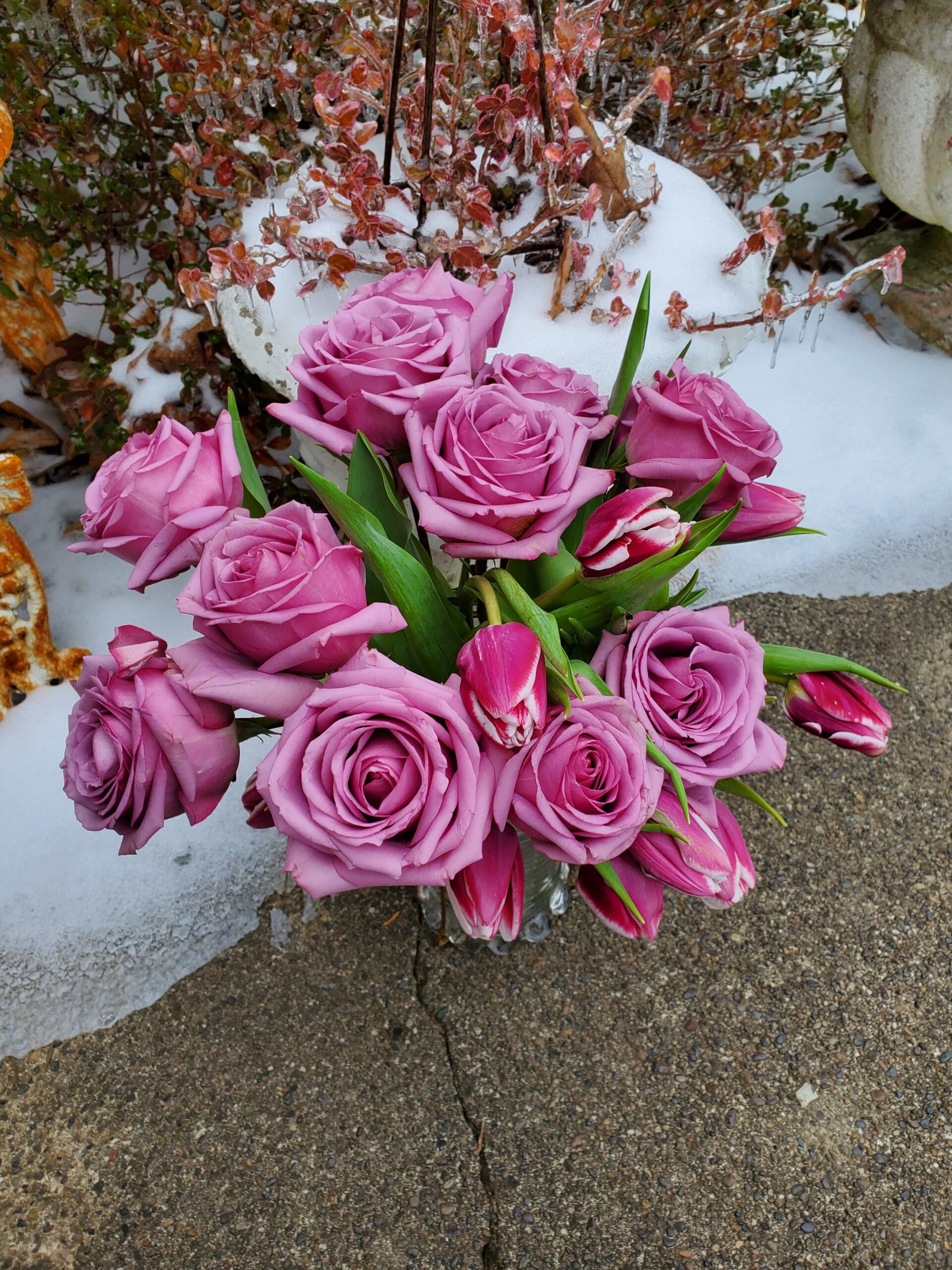 Pink Roses and tulips bouquet outside during a winter storm