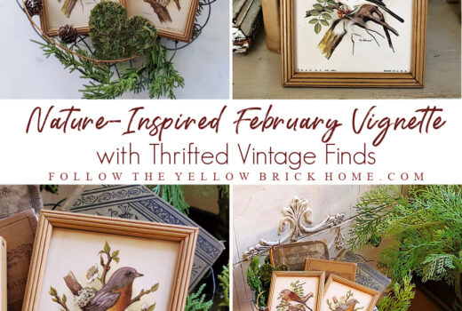 Vintage natured inspired vignette with vintage bird pictures, vintage books, evergreens, pinecones, and moss hearts in a vintage wire heart basket